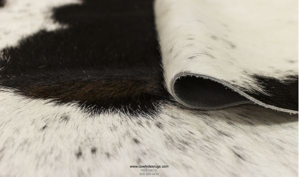 Gorgeous Black Spots on White Cowhide CH-EBWBW45